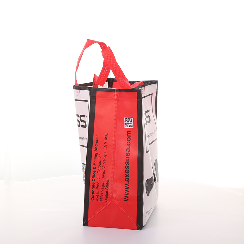 Laminated PP Non Woven Shopping Bag, Tote Bag, Cooler Bag, Canvas Bag pictures & photos