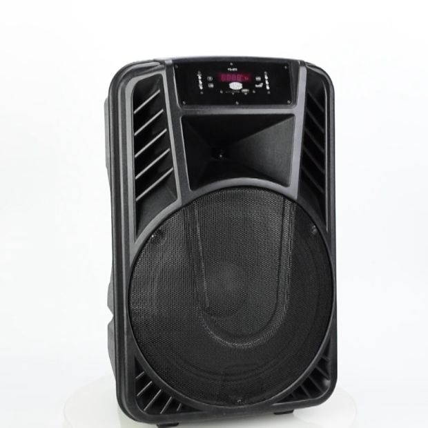 12 Inch Microphone Chargeable Bluetooth Portable Speakers pictures & photos