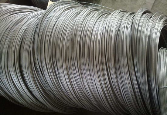 Stainless Steel Wire Rope Wholesale Price pictures & photos