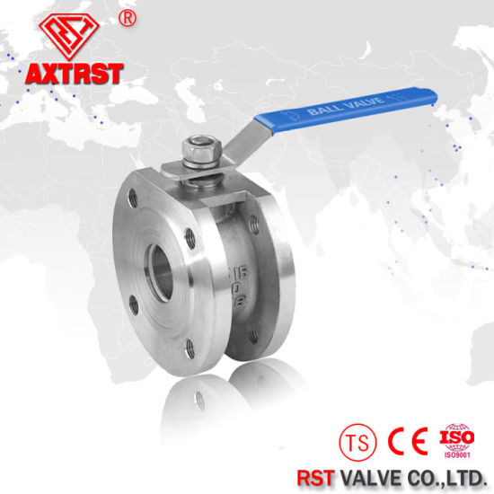 Stainless Steel DIN Wafer Type Check Valve pictures & photos