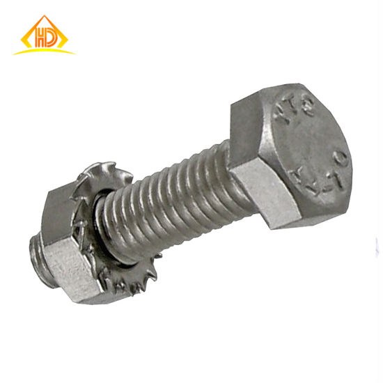 Stainless Steel Hex Cap Screw / Bolt 18-8 / 304/316 with Nut pictures & photos