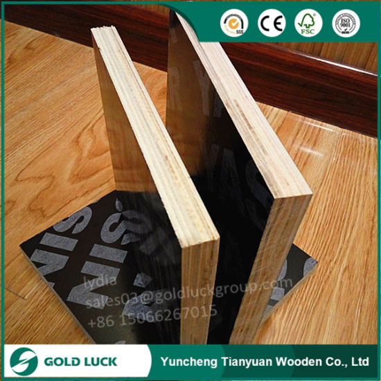 15mm 18mm Mr Laminated Cheap Marine Plywood 4X8 for Construction Concrete Use pictures & photos
