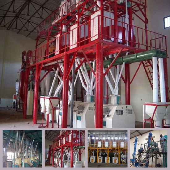 50t Maize Corn Flour Milling Machine in Africa Market pictures & photos