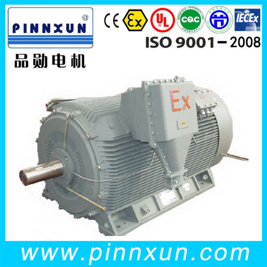 High Voltage Thress Phase Electric Coal Mine Explosion Proof Motor pictures & photos