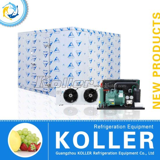 Koller Brand High Quality Cold Storage Bin/ Walk in Freezer pictures & photos