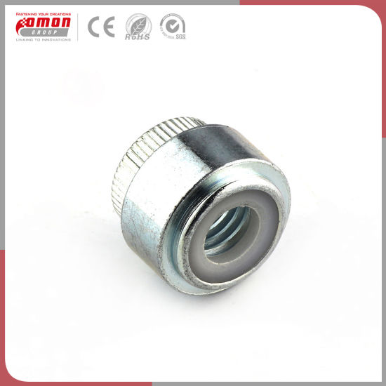 Customized Design M1.0~M12 Round Screws Insert Hex Steel Nut for Building pictures & photos