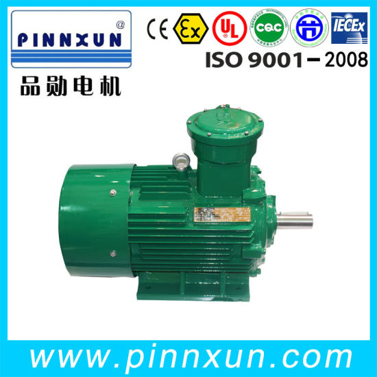Low Voltage Induction AC 110kw Explosion Proof Motor pictures & photos