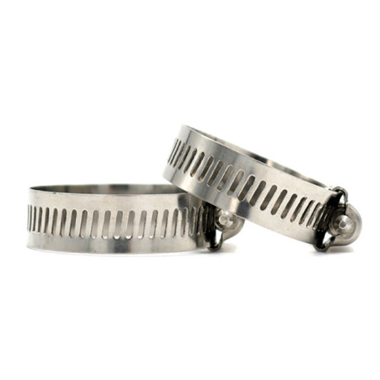China Factory Stainless Steel American Worm Type Hose Clamp European Type Perforated Band Heavy Duty High Pressiure Pipe pictures & photos