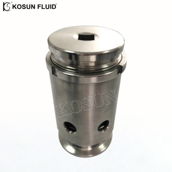 Stainless Steel Anti Vacuum Valve pictures & photos