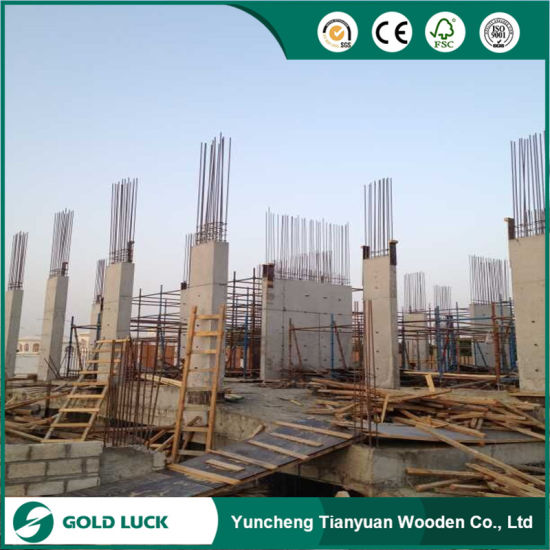 Phenolic Shuttering Plywood Price for Qatar/Dubai/Bahrain Saudi Arabia pictures & photos