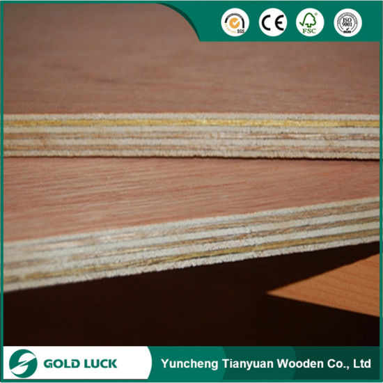 3mm/3.2mm Bintangor/ Okoume Plywood for Door Skin pictures & photos