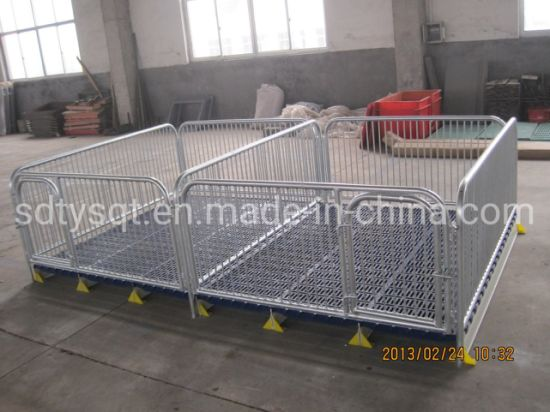 China Factory Supply Piglet Livestock Weaning Stall pictures & photos