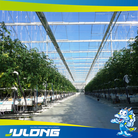 Venlo Agriculture Tempered Glass Greenhouse for Vegetable Growth pictures & photos
