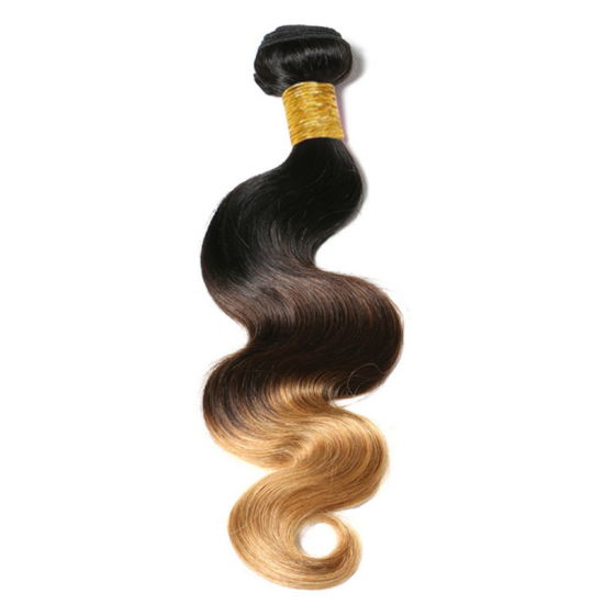 High Quality Human Hair Wigs for Women pictures & photos
