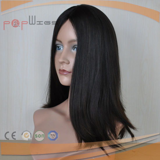 Remy Human Hair Natural Color Wig (PPG-l-01825) pictures & photos