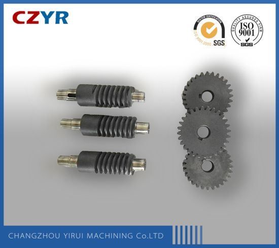 Stainless Steel Worm Gear Shaft with Is09001 Approved pictures & photos