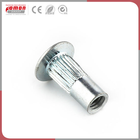 Customized Round Screws Insert Stainless Steel Heavy Hex Clip Nuts pictures & photos