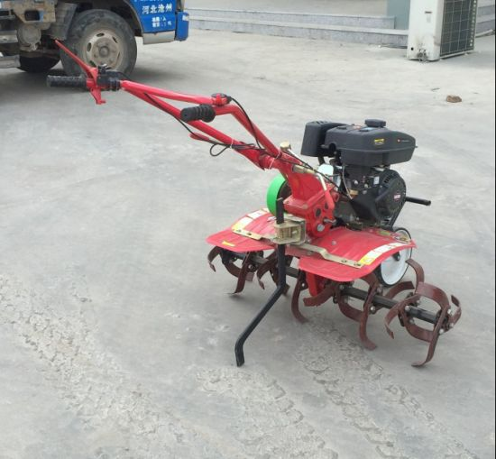 Mini-Cultivator of Agricultural Machinery/Planting+Fertilizing pictures & photos