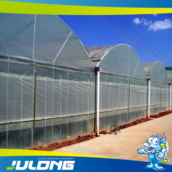 Good Quality Agriculture PE Film Greenhouse for Vegetable Hydroponic Growth pictures & photos