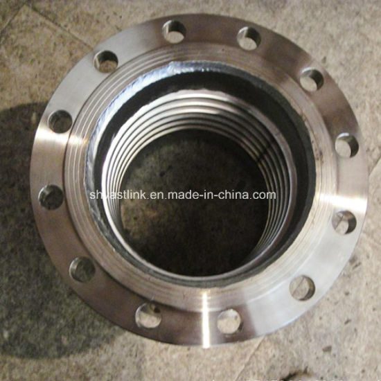 300 Series High Pressure Stainless Steel Thread Flange for Water pictures & photos