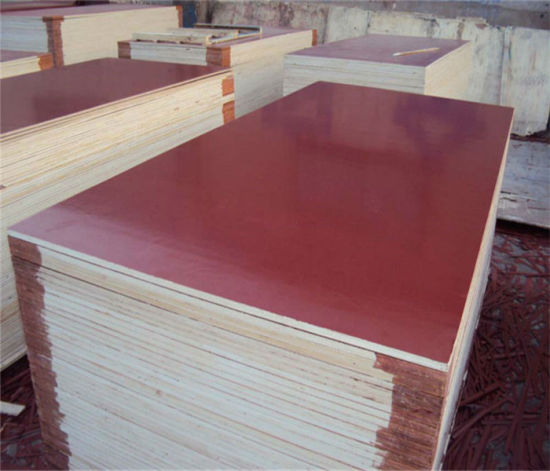 Plywood for Concrete Construction pictures & photos
