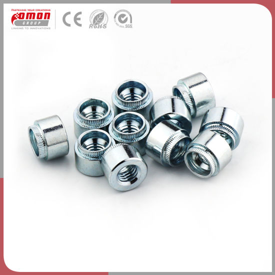 Building Hardware Round Insert Stainless Steel Rivet Hex Bolt pictures & photos