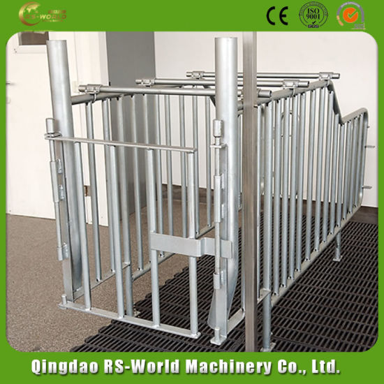 Supply Gestation Crate with HDG Treatment for Sow for Sale pictures & photos