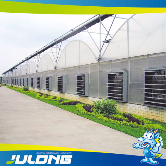 Agriculture PE/Po/PVC Film Greenhouse for Vegetable Growth pictures & photos