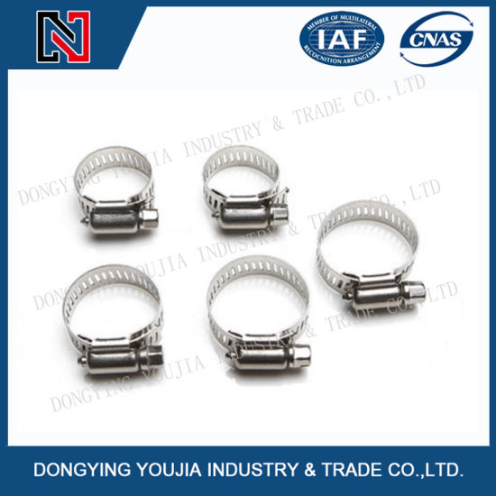 Chinese- Amrican Standard Stainless Steel Hose Clamps pictures & photos