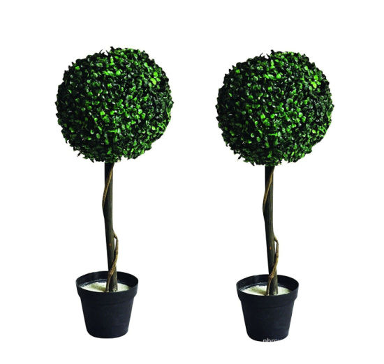 2 PC Solar Garden Tree Light (RS116) pictures & photos
