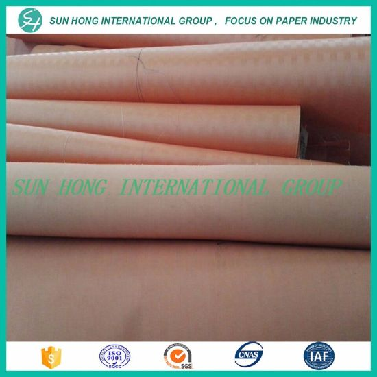 Polyester Desulfurization Filter Fabric in Power Plant pictures & photos
