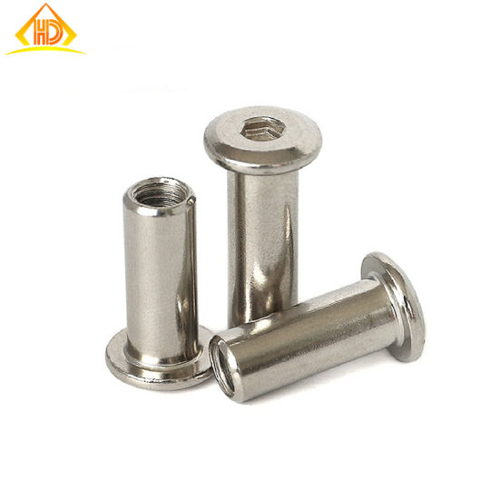 Factory Supply Stainless Steel M6X10mm Chicago Screws Book Screw pictures & photos