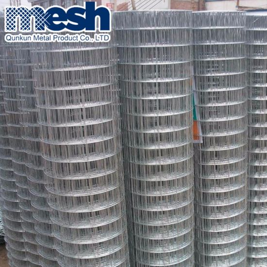 Hot Sale Welded Wire Mesh for Sale pictures & photos