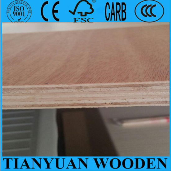 4*8 Size Bintongor Plywood in Linyi City pictures & photos