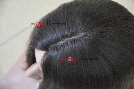 Human Hair Hand Tied Wig (PPG-l-0762) pictures & photos