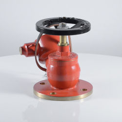 Fire Hose/Hydrant Landing Valve Oblique Type with Bsi Kitemark Lpcb Approved