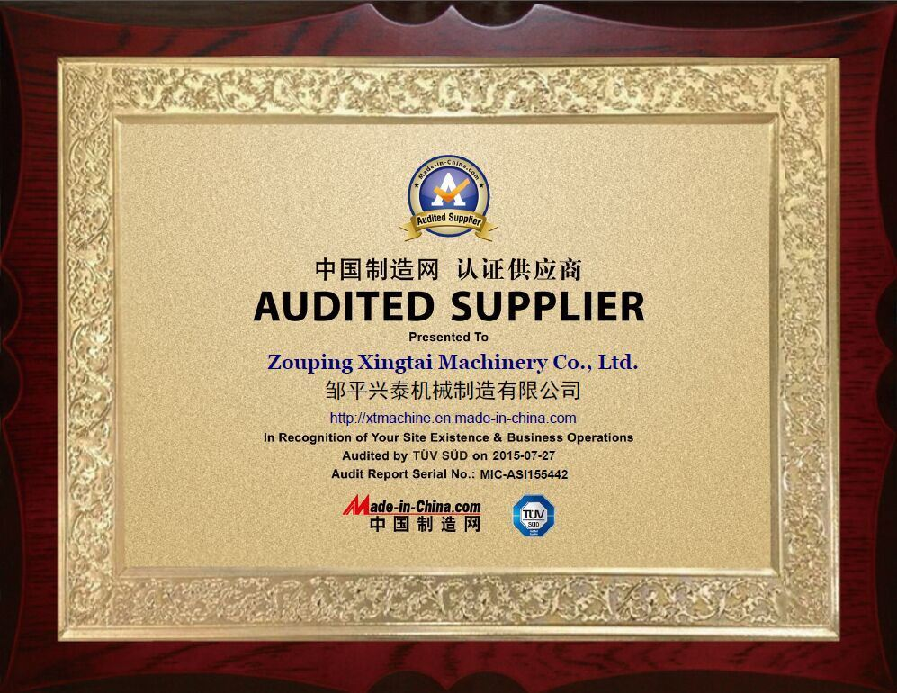 Audit report certificate