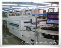 Computer Automatic Cutting