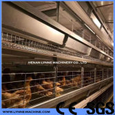 Chicken Equipments