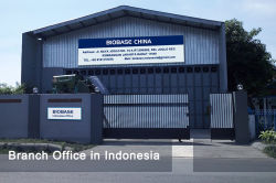 Branch Office in Indonesia