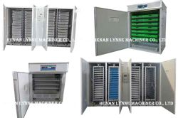 Hot Sale Incubator Equipment