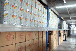 Frey Warehouse