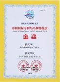 China International Patent & Brand Expo