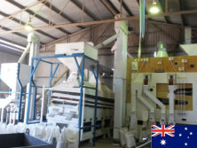 10 ton/hour barley seed processing plant in Australia