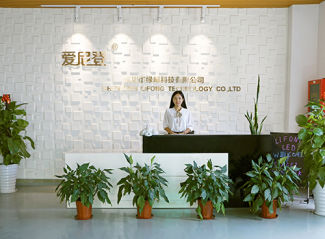 Shenzhen Lifong Technology Co., Ltd.