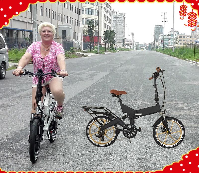 20 Inch Mini Folding Electric Bike/Hidden Battery E Bicycle