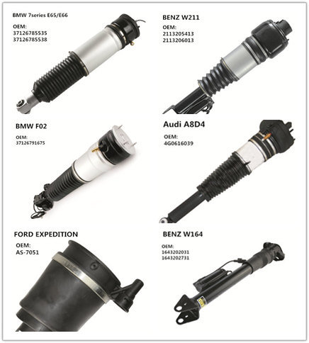 Air Spring Air Suspension for Benz W220 with Front 2-Matic