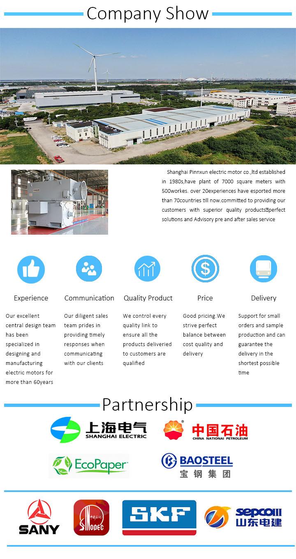 Tfw Brushless AC Generator 1000HP