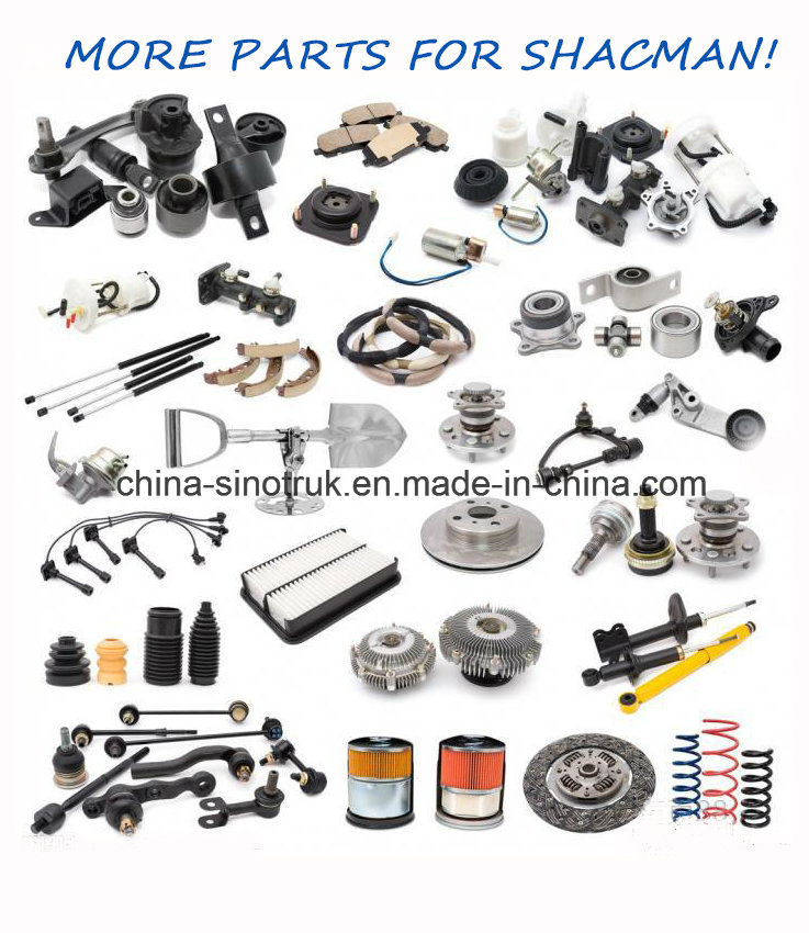 Competitive Price Original  Body Parts & Accessories for Shacman with Top Quality