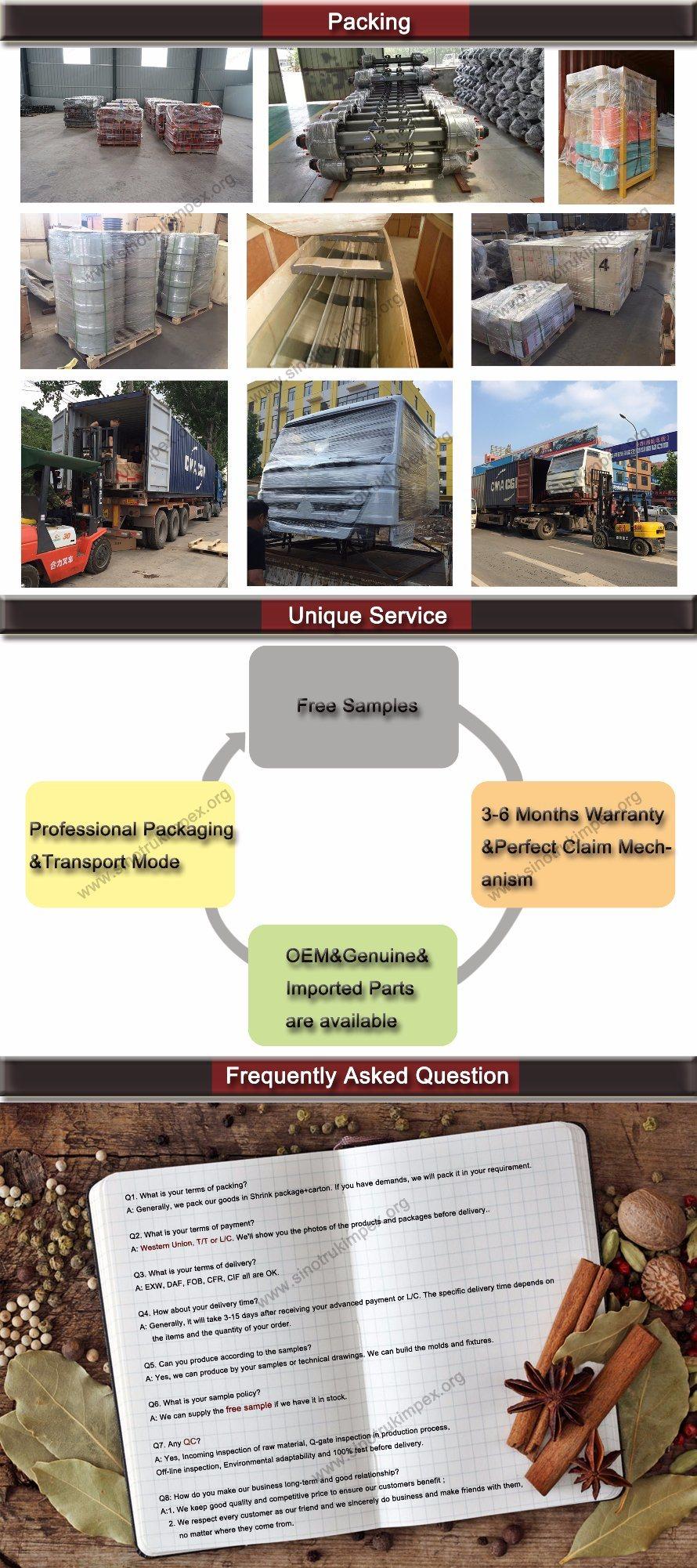Sinotruk HOWO Truck Parts High Pressure Tube (Wg9100470107)